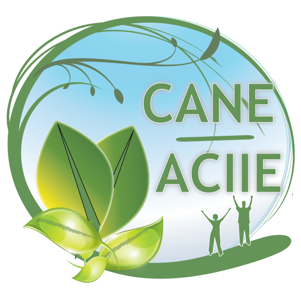 CANE-ACIIE